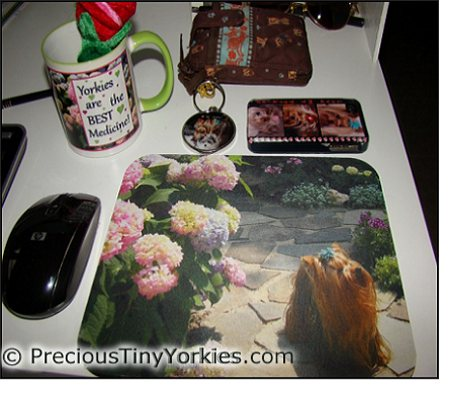 yorkie lover gift ideas